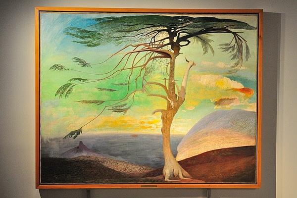 A magányos cédrus - Csontváry géniusza c. kiállítás