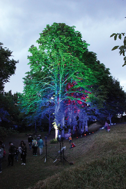 fényvetítés a Gárdonyi-kertben