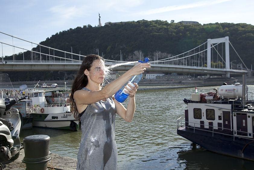 Forrás 4., Erzsébet híd