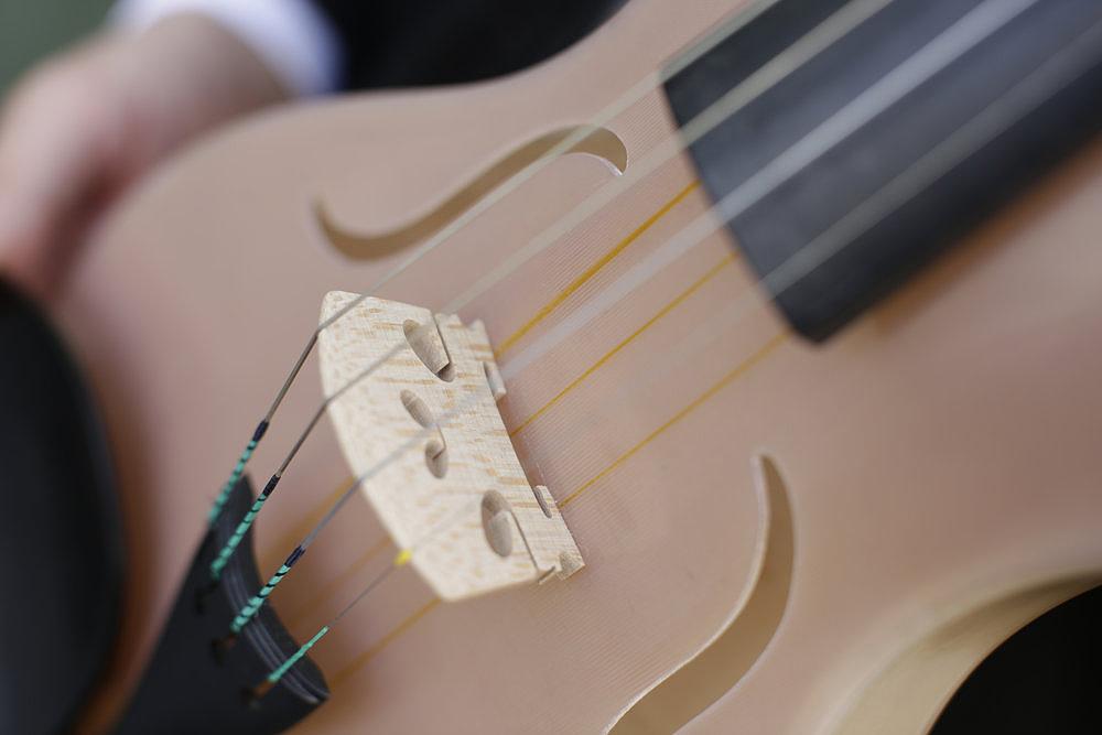Alessandri Luca selyemszálas hegedűje