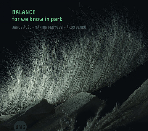 Balance_for_we_know_in_part_borito-134727.jpg